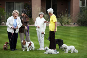Splendido At 7: Residents enjoy a laugh with their four-legged friends on the scenic grounds of Splendido, now celebrating its seventh year in Oro Valley. - Courtesy photo