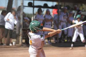 Softball teams off to fast starts