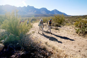 10,000-Mile Hikers: Bob and Leslie Esparza set out on the 50-year Trail in Catalina State Park. The couple has hiked more than 10,000 miles with the Sun City Oro Valley's hiking club.  - Randy Metcalf/The Explorer