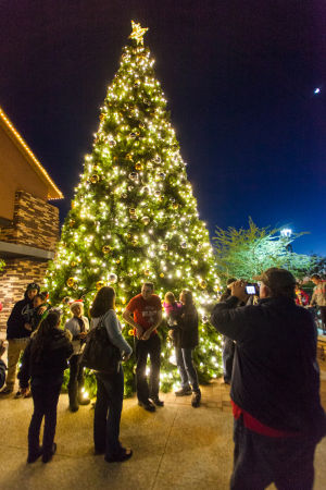 Oro Valley Holiday Tree Lighting Celebration: Residents take photo in front of the Oro Valley Holiday Tree. - J.D. Fitzgerald/The Explorer
