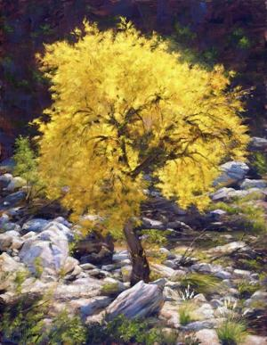 Murray's autumnal golds at gallery