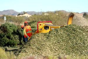 Mulch available from 'treecycle' program