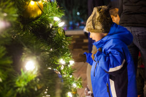 Oro Valley Holiday Tree Lighting Celebration: Five-year-old Jared Greer stands in awe of the Oro Valley Holiday Tree. - J.D. Fitzgerald/The Explorer