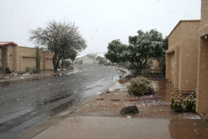 Snow Day: A neighborhood in Northwest Tucson as seen during the snow flurry.  - Brandon Hays/The Explorer