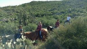 El Conquistador horseback riding
