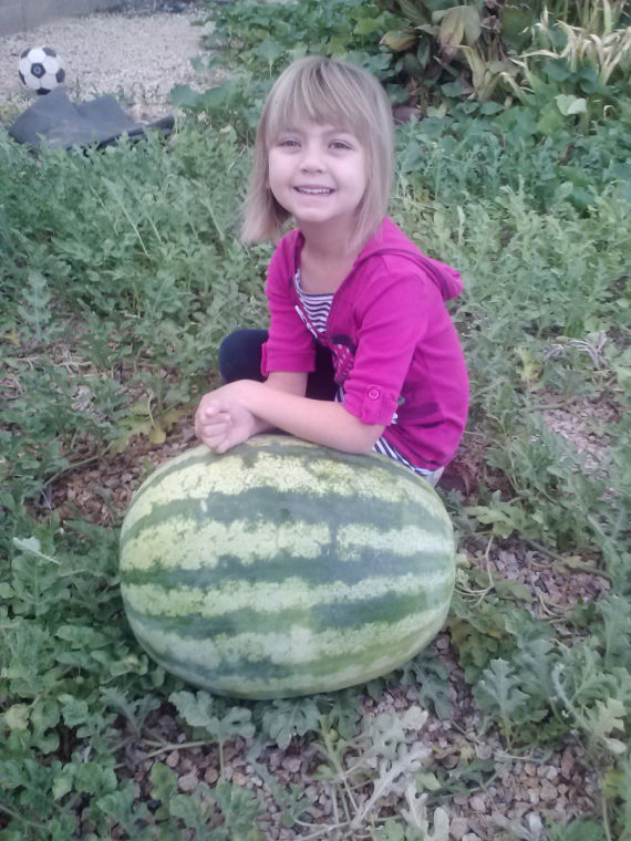 Homegrown Watermelon