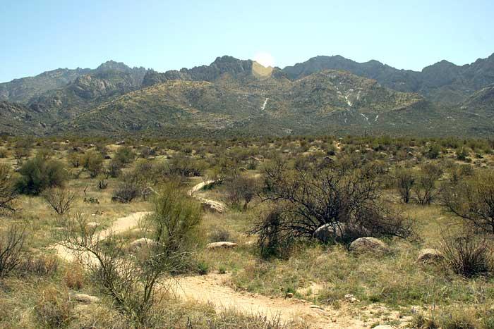 Catalina State Park 1