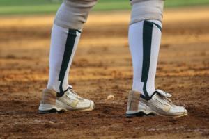 State softball update