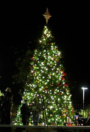 OV tree 2