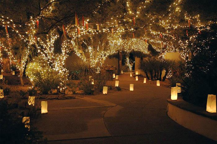 Park lights up for holidays
