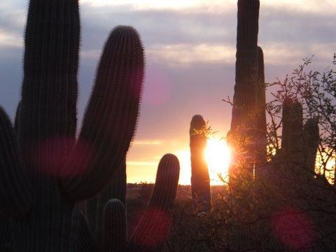 Romero Ruins Trail sunset