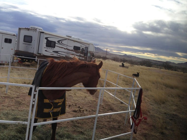 Arizona American Endurance Ride in Sonoita