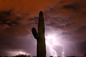 Be ready for monsoon, officials say