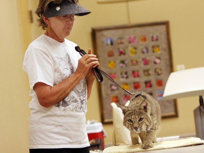 Wildlife rehabilitator Schroeder has a soft spot for animals in need