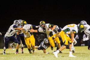 Nighthawks rally to down rival Dorados