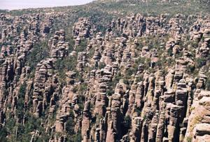 'Standing up rocks' in Chiricahuas