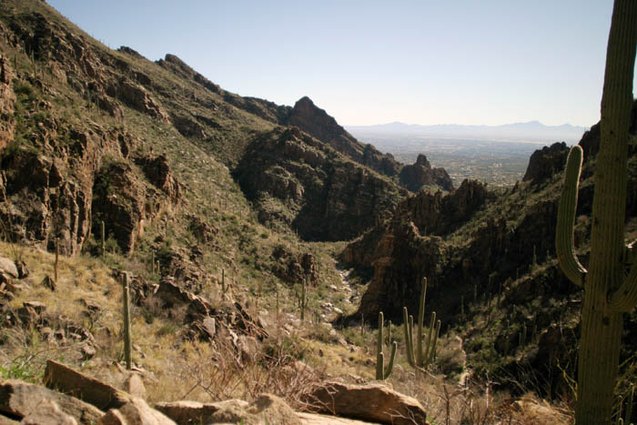 Ventana Canyon