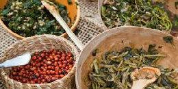 Celebration of basketry and native foods