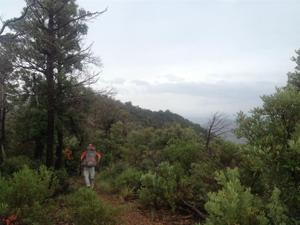 Mt. Lemmon hiker found