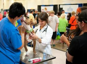 Tucson Pet Expo to offer rabies shots for $10