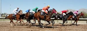 Rillito Park Horse Race