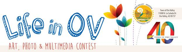 Art, photo and multimedia contest