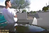 Marana Police release video in Feb. cruiser ramming