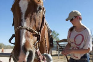 Horse Camp: Samantha Joseph, 15, helps get Jack ready, a 16-year-old American Quarter horse, at the Crazy For Horses Kids Summer Camp. The camp gives children the opportunity to learn more about to safely ride and work with horses. - Hannah McLeod/The Explorer
