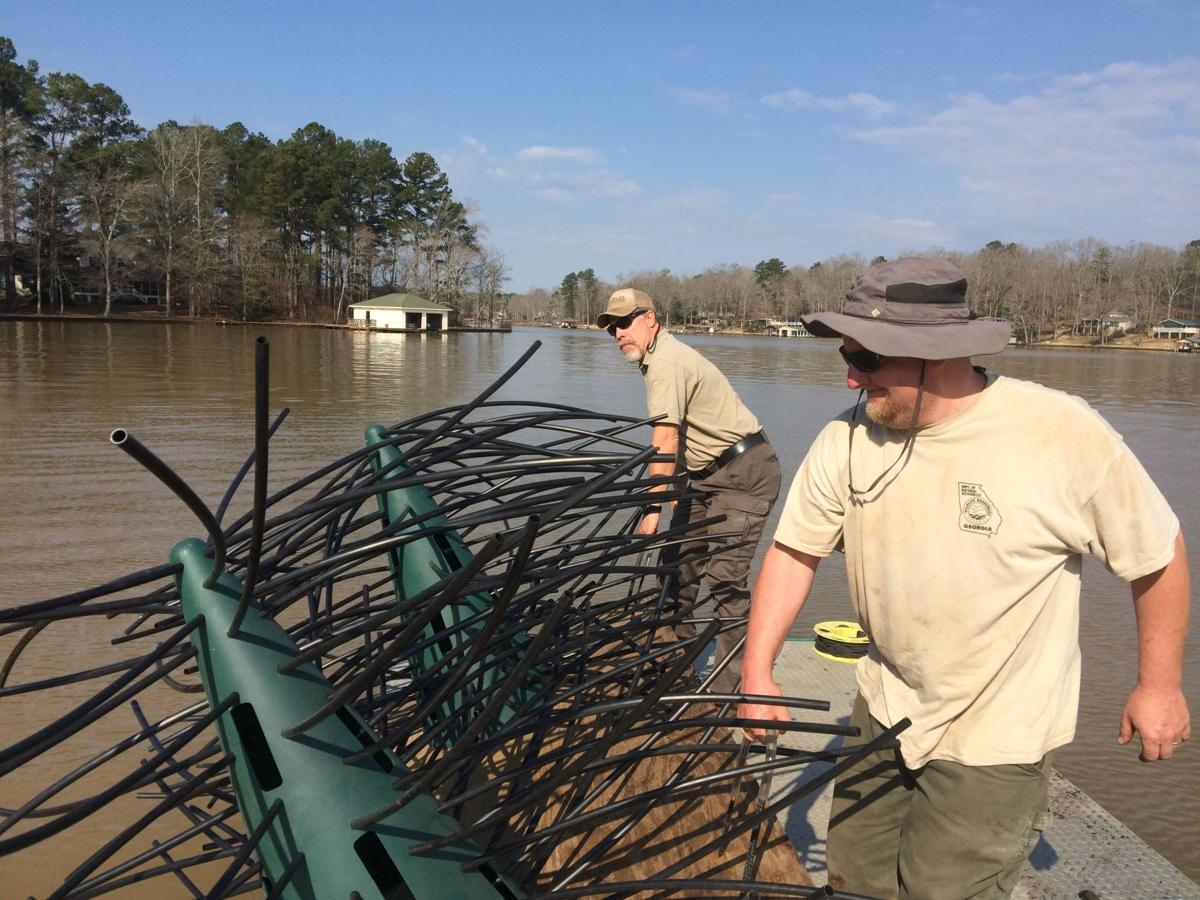Outdoors update on lake sinclair and lake oconee fishery for Lake sinclair fishing