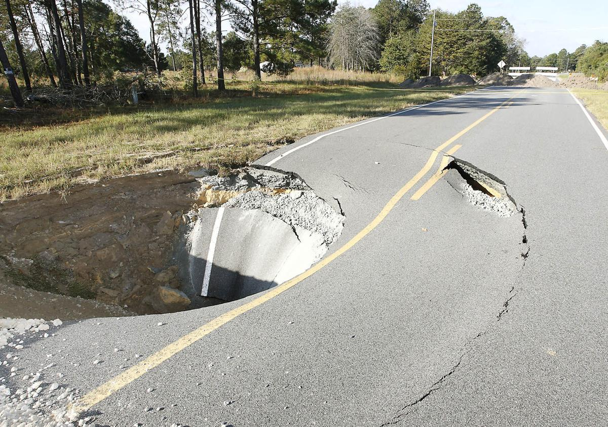 snake-nation-sinkhole-vdt-2010-11-01.jpg