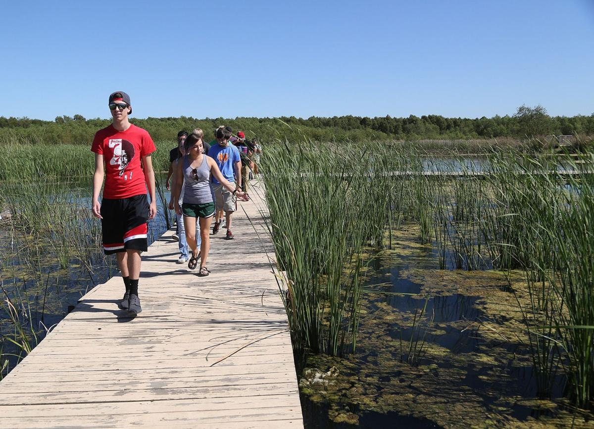 Extension Walk Boards : Lake waco wetlands to extend boardwalk with help from