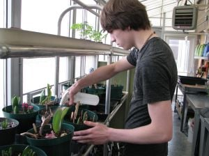 Agriscience class making good use of greenhouse