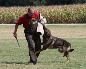 Dogs show skills in Ashland