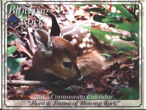 2015 community calendars available