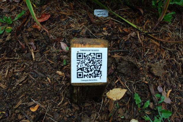 QR codes sprout at Daniel Boone Native Gardens