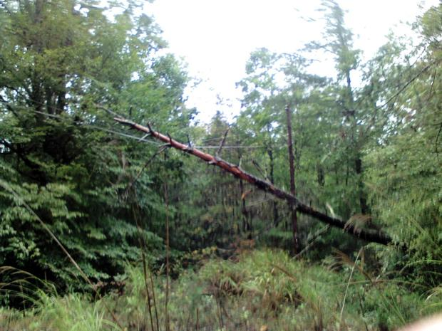 Linemen working to restore power in Watauga and Caldwell counties
