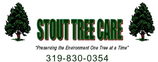 Stout Tree Care
