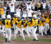 State baseball: Go-Hawks are state champs