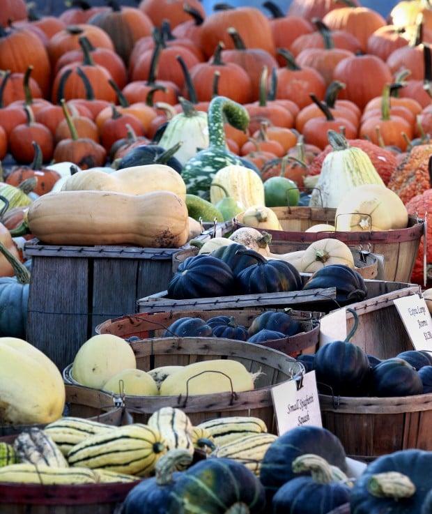 100612rc pumpkin harvest4 for La porte city iowa city hall