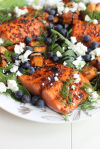 Something fishy: A simple guide and recipes for mastering salmon