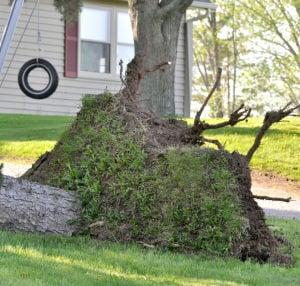 Winds do damage