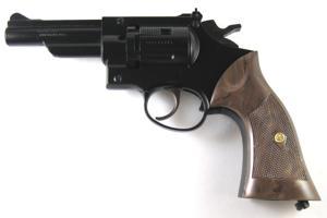 Mugger killed by would-be victim