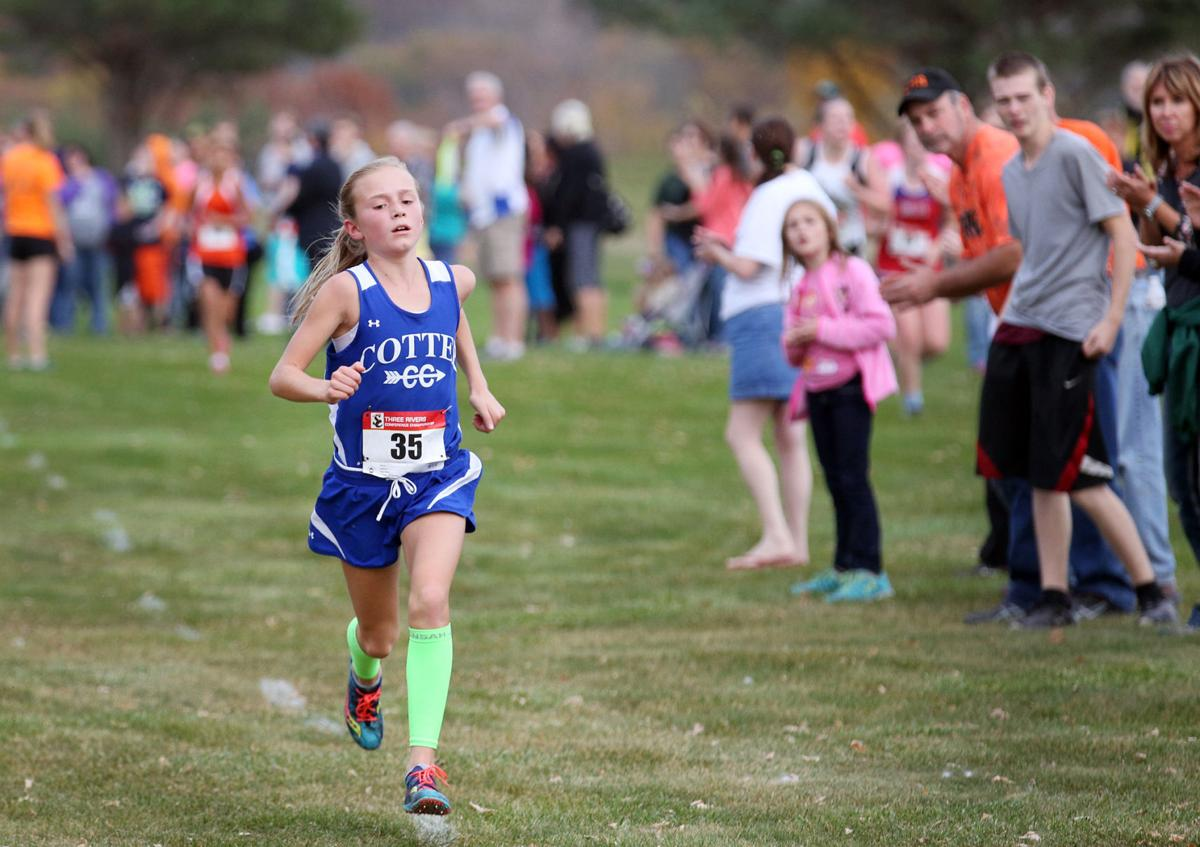 mshsl cross country state meet results 2014