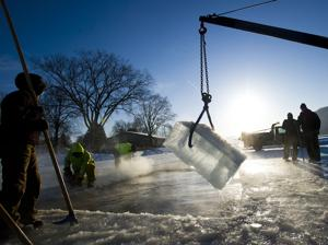 Photos: Top 20 from February