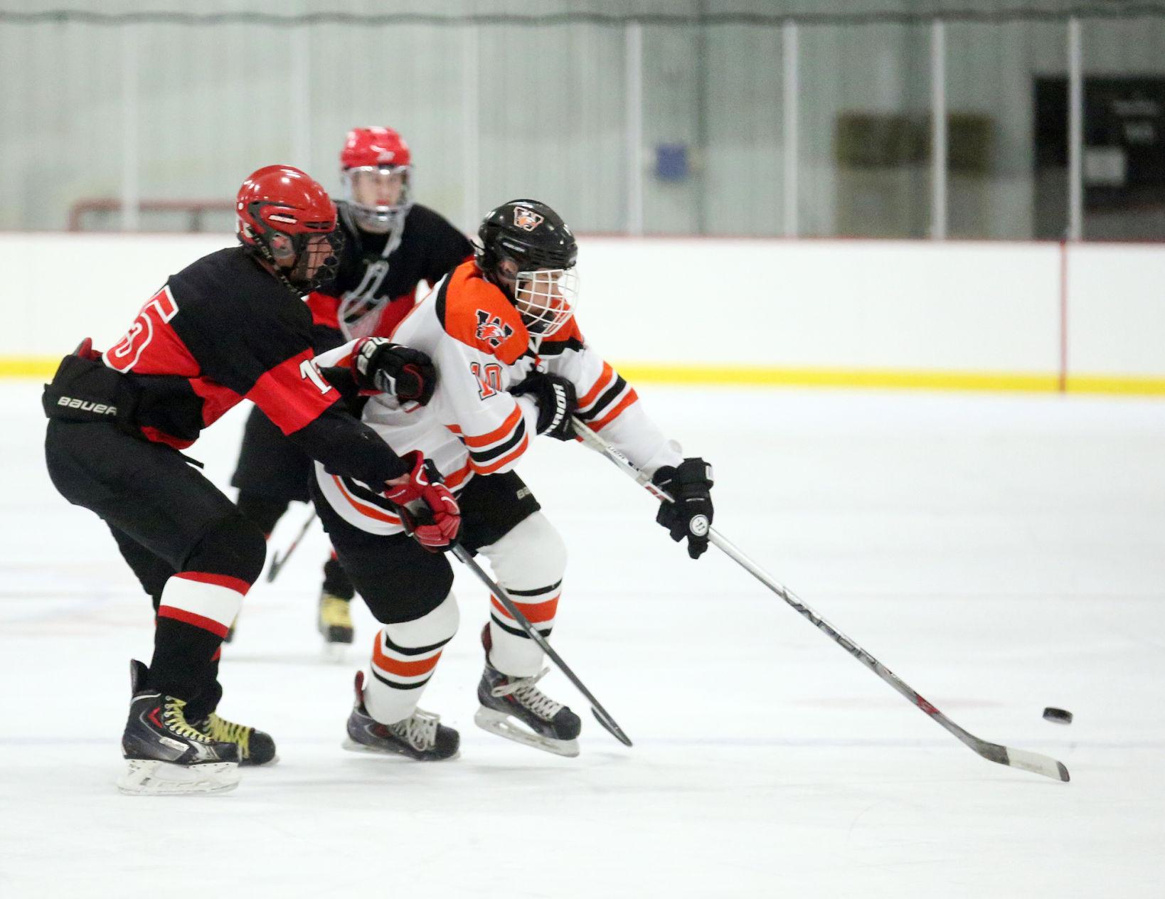 MN H.S.: Mannor, Winona Boys Hockey Team Win Again