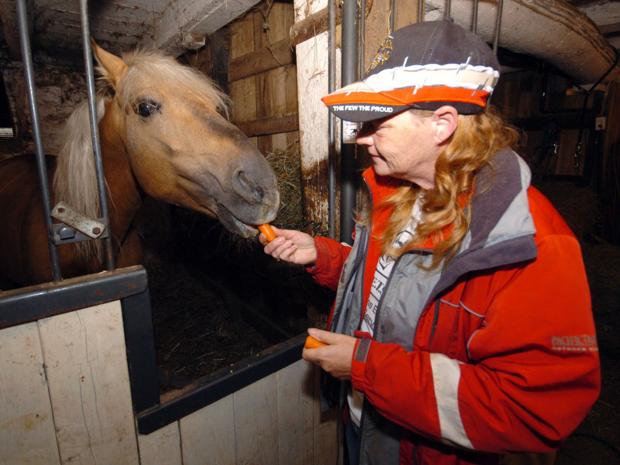 Virus a 'major concern' for horse lovers