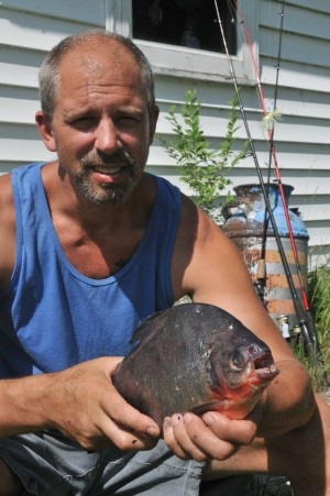Catch looks like piranha but it s equally rare pacu for Jims exotic fish