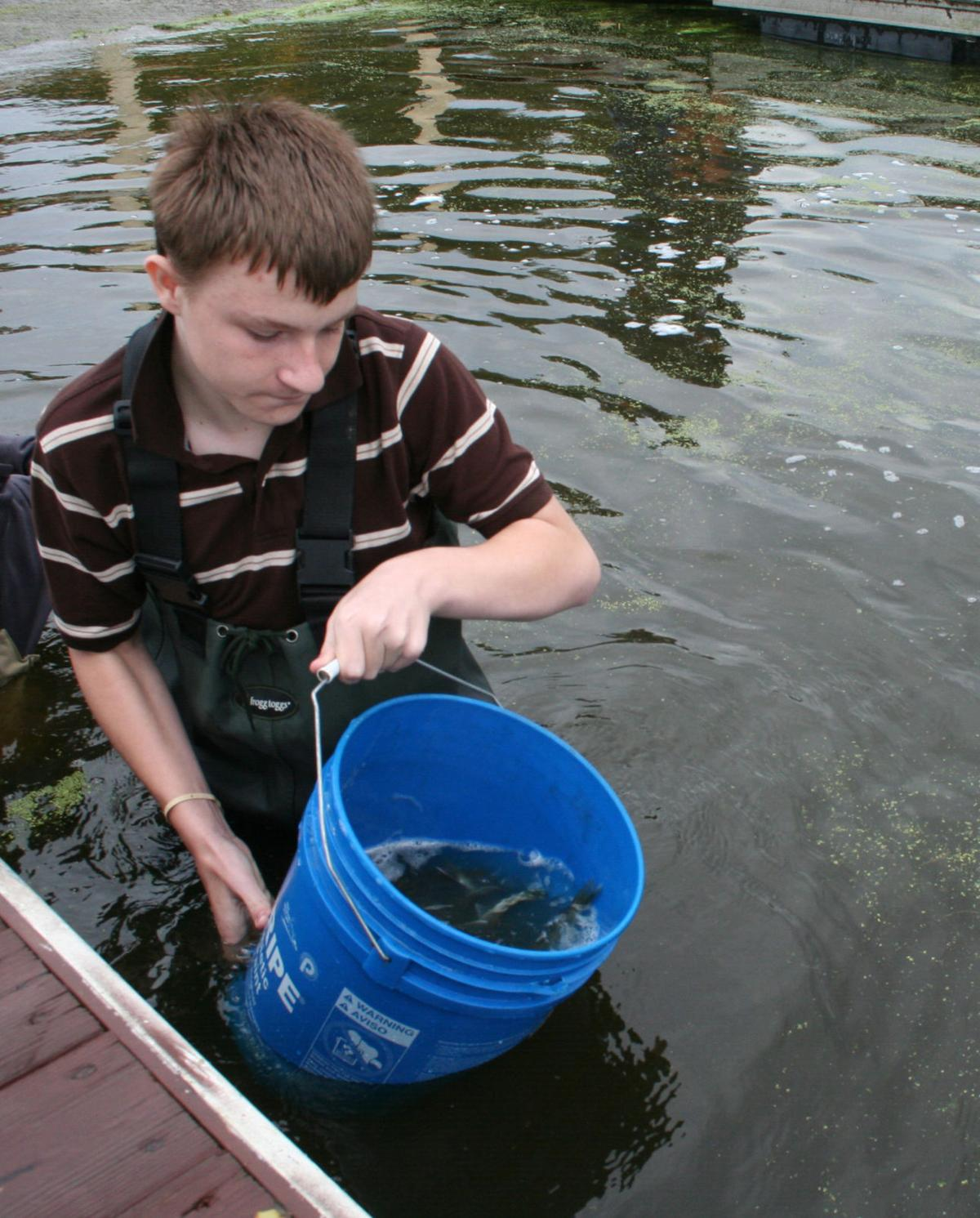 Buckets of fish emptied into fox lake by sages students for Bucket of fish