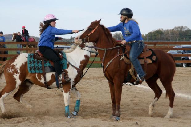 Almost a second state equestrian championship