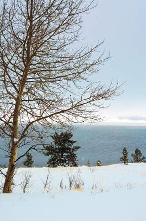 White mountain fishing report white mountain independent for White mountain fishing report